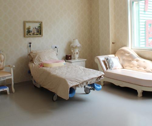 1家具:贵妃椅,全套欧式家具,休养床一张,陪护床一张,保险柜,豪华婴儿